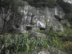 Guizhou China cave 平坝三口洞与上口洞 (黔中秘境) Tags: china guizhou asia mountains 中国 贵州 亚洲 山 大自然 cave cavem caves caving cccp speleo 中国洞穴 贵州洞穴 洞 山洞 洞穴