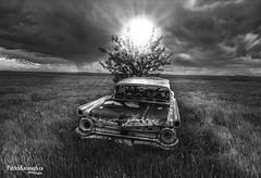 Sun Hat - BW (Pat Kavanagh) Tags: panorama white canada black abandoned landscapes alberta prairie prairies hdr taber