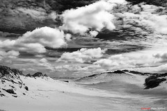 Westduinpark (Pieter Musterd) Tags: bw holland clouds canon zwartwit nederland thenetherlands wolken denhaag canon5d nl paysbas duinen thehague niederlande zuidholland musterd westduinpark pietermusterd sgravenhage canon5dmarkii haagspraak pmusterdziggonl