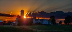 Farm sunset (virgil martin) Tags: panorama landscape sunset olympusomdem5 wellesleytownship waterlooregion ontario canada oloneo gimp microsoftice mennonitefarm goldenhour