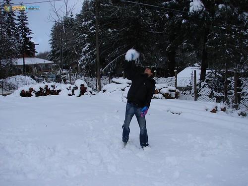 CZ-Platania-Nevicata sul Reventino 17_L