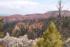 "bryce_198 • <a style=""font-size:0.8em;"" href=""http://www.flickr.com/photos/67316464@N08/8836770190/"" target=""_blank"">View on Flickr</a>"
