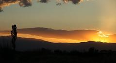 Last sun, Paralia (helvellyn1) Tags: sunset field chapel olympus greece macedonia roadside katerini settingsun thesalloniki sheepdoggreekdogshepherdgreece