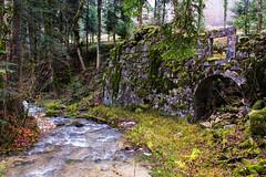 Ruines de l'abbaye de Meyriat (Florian Tomera) Tags: nature landscape ruins 01 paysage ruines ain abbaye rhonealpes 600d meyriat