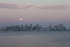 Blue Moon August 2013 (tida_ketchup) Tags: california moon skyline sandiego fullmoon bluemoon beltofvenus sandiegoskyline earthshadow
