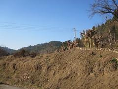 Barkot Village Haripur Pakistan (NatLuv) Tags: road trip pakistan district rainy khanna haripur dhaaba barkot daychai