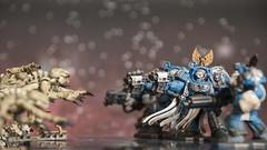 Action shot 4 (Sorastro) Tags: miniatures space warhammer marines hulk gamesworkshop genestealer spacehulk