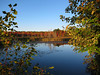 IMG_0951 (Dan Correia) Tags: amherst shadows swamp reflection 15fav topv111 topv333 topv555 topv777 addme500