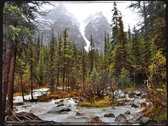 Mountain Stream (Stella Blu) Tags: autumn river albertacanada banffnationalpark morainelake mountainstream nikkor18200 stellablu thechallengefactory nikond5000 storybookwinner pregamesweepwinner storybookttwwinner