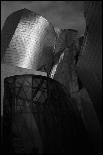Guggenheim Museum Bilbao 50