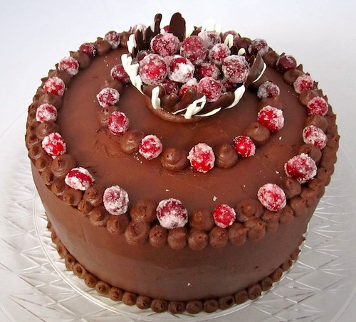 Chocolate Cake with Candied Cranberries