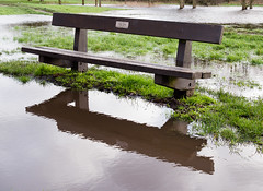 Albert's Bench hasn't quite floated away (Rupert Brun) Tags: lake river flood north meadow meadows bexley floods cray foots flooded footscray sidcup footscraymeadows