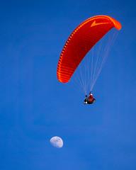 Higher than Moon (maida0922) Tags: california blue sky people moon flying sandiego azure lajolla 4x5 paragliding paraglider lunar waxing halfmoon blacksbeach torreypinesgliderport em5 mzuiko40150mmf4056r