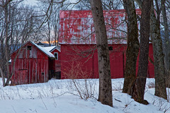 Snow at the Red Barns (SunnyDazzled) Tags: longexposure winter red snow cold history rural forest landscape three newjersey decay farm farming barns trio complex vision:text=0539 vision:outdoor=0975
