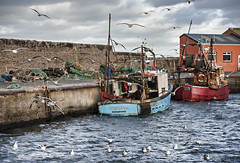 "Port Seton Harbour • <a style=""font-size:0.8em;"" href=""http://www.flickr.com/photos/24720920@N04/12995203223/"" target=""_blank"">View on Flickr</a>"