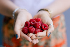 (danielle kiemel) Tags: family red summer food woman home girl fruit garden outdoors hands berries bokeh gardening january young australia fresh nsw raspberry newsouthwales centralcoast nailpolish natasha raspberries homegrown 50mmf14 2014 vegetablegarden wamberal inhands growinglife daniellekiemel heritageraspberry nikond7100