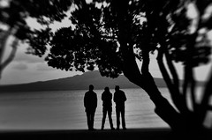 Conspiracy (spannerino) Tags: trees white black tree men beach silhouette lensbaby conspiracy trio