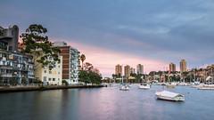 Rushcutters Bay Park (PiotrHalka) Tags: ocean sunset sea sky seascape water landscape nikon sydney australia nsw newsouthwales suburb fullframe f4 edgecliff elizabethbay 1635 d600 rushcuttersbaypark