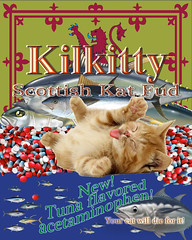 Kilkitty Scottish Kat Fud #cats #kittens - v (SouthernBreeze) Tags: ocean trip travel family friends light sea food usa cats fish silly art public animal cat geotagged dead fun death al md kitten kat feline funny kill die flavor unitedstates serious huntsville killing alabama humor pussy kitty maryland catfood pharmacy health human irony laugh drug medicine hq pills care tuna veterinarian silverspring information geotag harm healthcare hysterical hsv fda inform tablets fud veterinary pharma usda mbp pharmaceutical 2014 capsules tunafish acetaminophen southernbreeze pharm cs5 caplets
