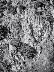 Finikaria (Nicolas P. Tschopp) Tags: terrain mountain rocks flat earth stones ground erosion descend geology 2d slant pinetrees slope telephotolens incline topography declivity vrtical limassoldistrict finikaria finikariamountainslope mountainslopeviewedfromdistance