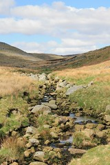 To the Hills..... (pongyc) Tags: stone beck yorkshire reservoir hills grassland grimwith