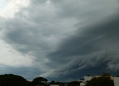 (IgorCamacho) Tags: summer brazil sky storm paraná rain weather brasil clouds lluvia chuva céu southern cielo nubes tormenta nuvens verão sul tempestade shelfcloud