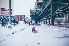 Rory Snow (Jose Tutiven) Tags: street new york city nyc portrait snow photography bronx voicethebronx