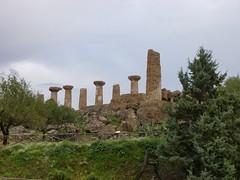 Valle dei Templi (19)