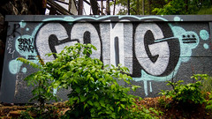 Gong (Karol A Olson) Tags: streetart art graffiti words dc washington tag gong