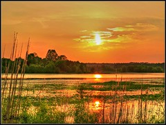 Fire in the Sky (Suzanham) Tags: mississippi noxubeewildliferefuge lakeloakfoma sundown
