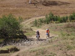 Seven Mile Diggings (Neil Ennis) Tags: cycling story mtb bnt southburnett oldcoachroad bicentennialnationaltrail bunyamtsbikepack2016 httpnbeme8490 sevenmilediggings oldeskroad