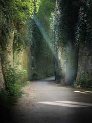 hohle gasse (rolfamsee) Tags: lightpainting licht natur weg gasse