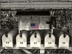 Mail Flag (NoJuan) Tags: cutout flag 28mm sigma a7 usflag selectivecolor selectivedesaturation hss miniwide sonya7 slidersunday sliderssunday manualfocuslensondslr sonya7withmanualfocuslens
