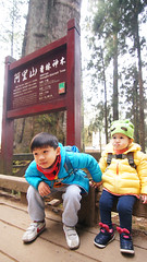 DSC01705 (YUKI Hsu / nlyuki) Tags: chiayi 阿里山 嘉義 sacredtree 神木 阿里山國家風景區 shenmu alishannationalscenicarea 情人果2y2m 可樂果6y3m