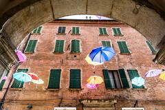 Ferrara (Anita Pravits) Tags: italien italy umbrella italia ferrara umbrellas emiliaromagna schirme schirm