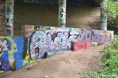 9/24/2014 (sixheadedgoblin) Tags: spray publicart awake luigi olympiawashington detox