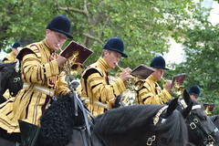 Horse Brass (dhcomet) Tags: horse music london army band royal parade bands mounted british themall pageantry troopingthecolour massed