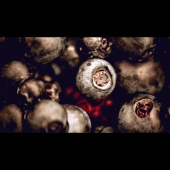 Screaming blueberries /   (aleksejchervjakov) Tags: red food white black macro beautiful fruit dark berry background latvia blueberry macros  macrophotography