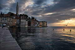Rovinj sunset (connymarkert) Tags: europe croatia istria rovinj sunset seagull travel