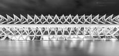 The Range (alfonstr) Tags: longexposure valencia architecture night canon noche arquitectura silk structure calatrava 7d nocturna seda serie 1022 estructura alfons 2016 largaexposicin ciutatdelesarts alfonstr