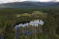Lochans. (stonefaction) Tags: uath vath lochans highlands scotland landscape iphone