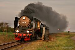 Pt47-65 w Adamowie (ahimsia) Tags: train engine poland polska railway steam locomotive dampflok kolej wielkopolska wolsztyn lokomotywa wiadukt parowóz pt47 pt4765 adamowo