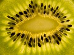 kiwi detail (LibreShot.com) Tags: light food green closeup fruit healthy natural background fresh organic kiwi 500px ifttt
