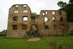 48 Oppenheim, Burgruine Landskron (Ruin of Castle Landskron) (HEN-Magonza) Tags: germany deutschland vineyard weinberg rheinlandpfalz oppenheim rhinelandpalatinate burgruinelandskron ruinofcastlelandskron