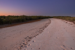 Sunset tidal mangrove beach Port Smith (--Welby--) Tags: trees sunset sky white beach port coast sand colorful fuji australia smith mangrove western wa kimberley mangroves tidal broome 10mm samyang xt10