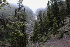 Sulfur Mountain (myphotothrowaway) Tags: mountain lake mountains hiking lakes glacier louise alberta rivers backcountry banff canmore