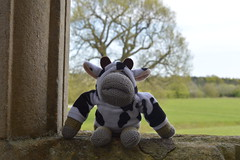 Monkey Up North - Lyveden Lodge (monkey_pgtips) Tags: castle abbey monkey yorkshire lincolnshire whitby scarborough lyveden