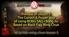 Wing Chun Bong Sao Technique based on Maximum Efficiency (Hek Ki Boen Eng Chun) Tags: man black flag wing chun donnie yen ki hek ip yip boen