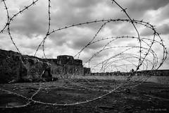 Fortress (M.N. van der Kolk) Tags: ss firstworldwar concentrationcamp secondworldwar willebroek prisoners breendonk werkkamp eerstewereldoorlog tweedewereldoorlog gevangenen fortvanbreendonk doorgangskamp nazisnazis