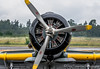 A6M2 ZERO REPLICA (Chris Parmeter Photography) Tags: heritage sport museum plane airplane geotagged japanese nikon fighter famous flight engine sigma replica ww2 propellers d500 aricraft a6m2 150600mm